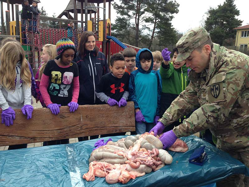 Grafenwoehr Army Health Clinic's Maj. Robert Cornfeld dissects a pig with fifth-graders from Grafenwoehr Elementary School.