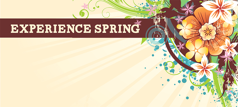 experience_spring
