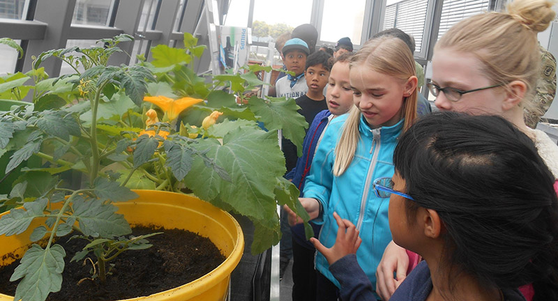The middle school graciously allowed elementary students to take a tour in their green house and learn about the different plants they house there.